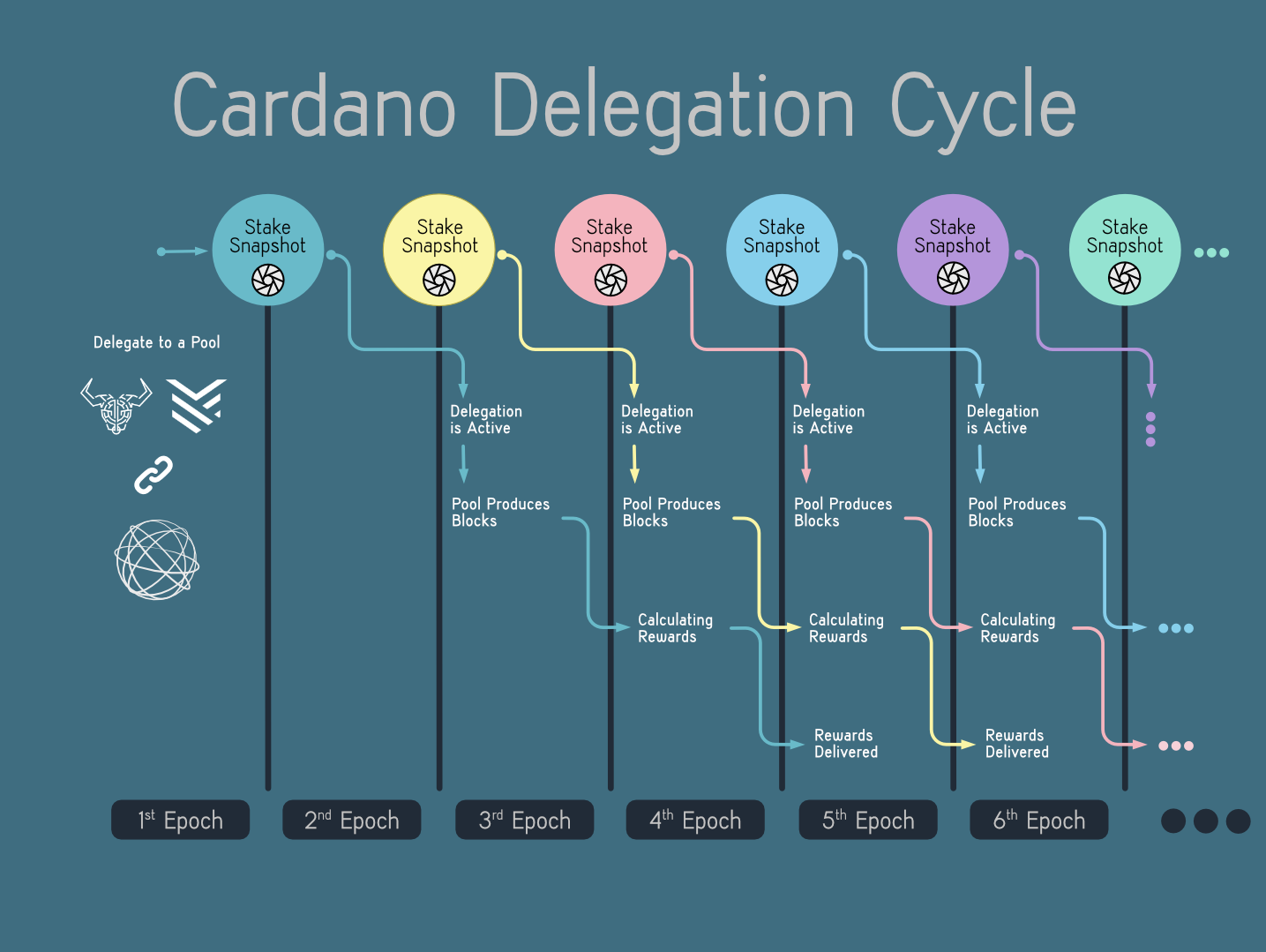 Cardano Delegation Clcle